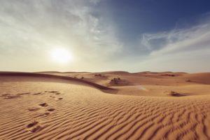 砂漠って走る所なのか?(^^;)